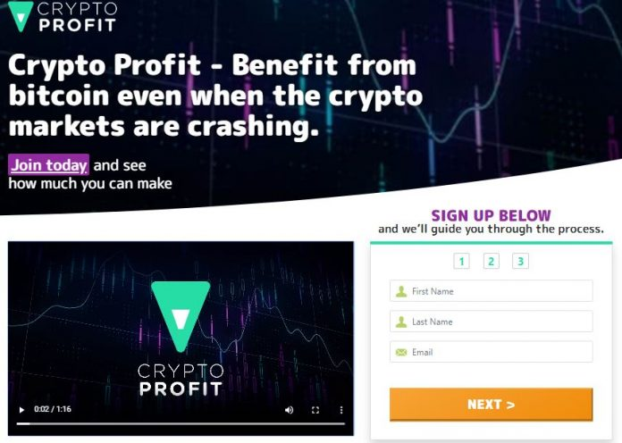 crypto profit review