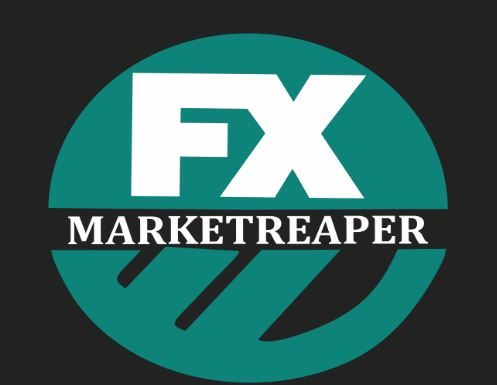 fx market reaper review