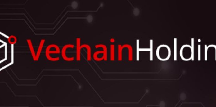 vechain holdings review