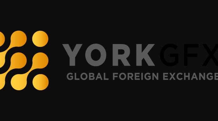 York GFX Review