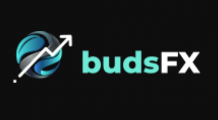 Budsfx review