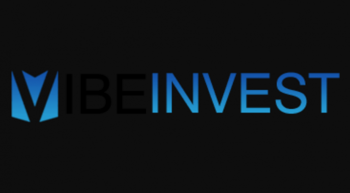 VibeInvest Review