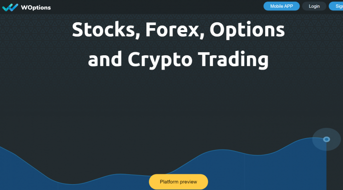 WOptions Review
