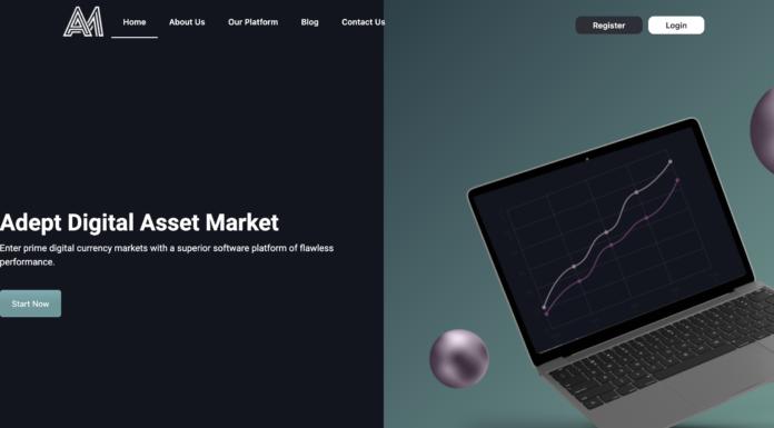 Avex Market Review